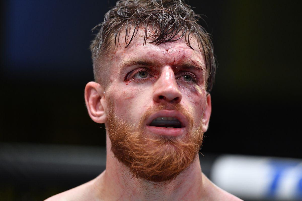 UFC Fight Night: Hermansson v Shahbazyan