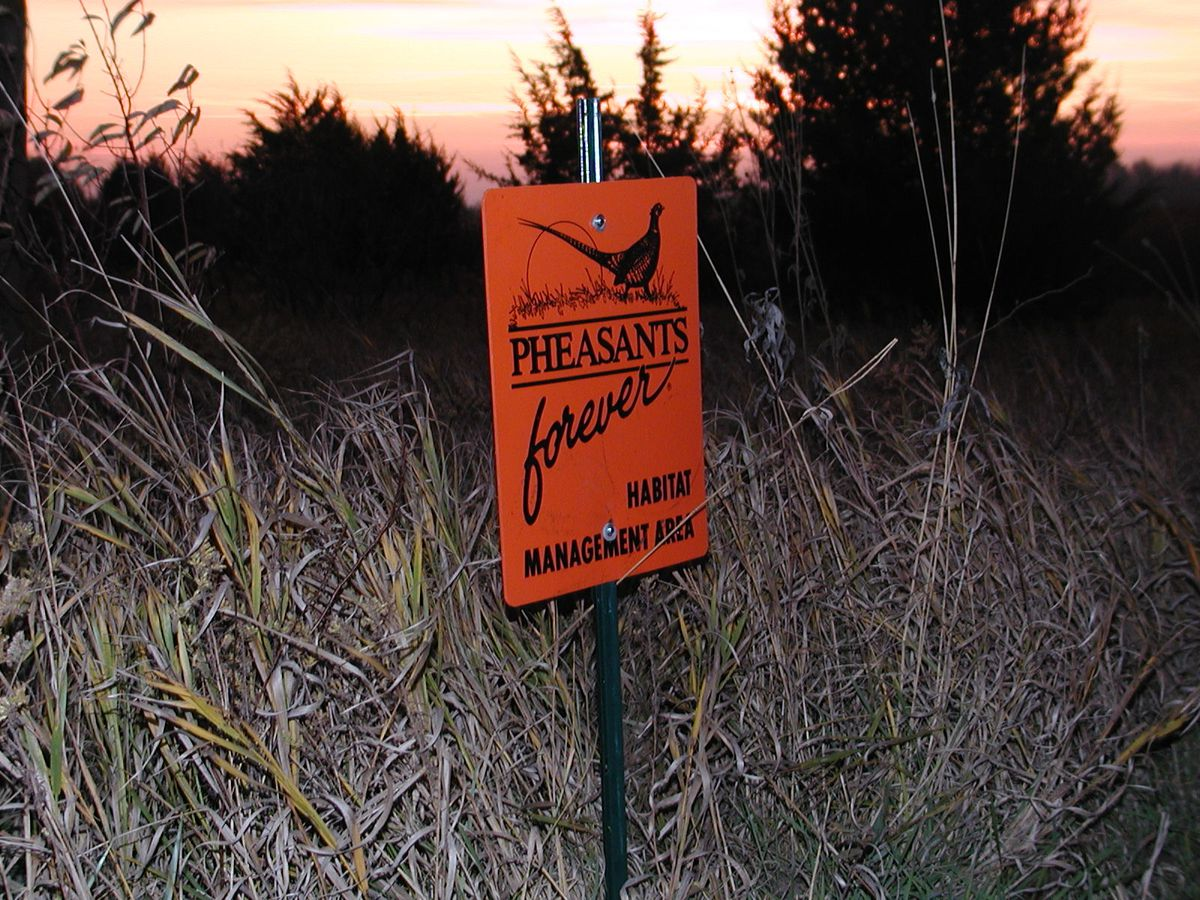 Habitat will be a main feature at National Pheasant Fest & Quail Classic Friday through Sunday at the Schaumburg Convention Center.Dale Bowman/Sun-Times