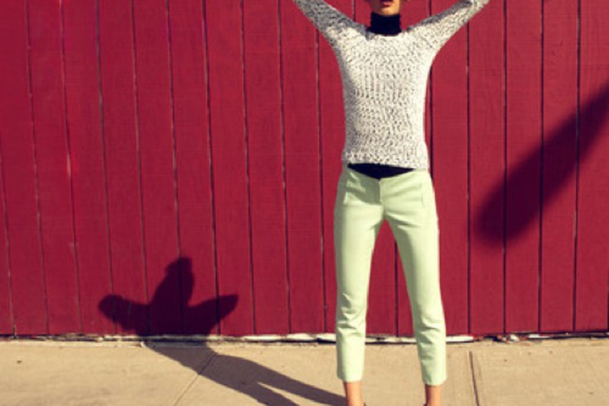 A.L.C. today on Gilt