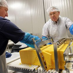 Volunteers Sherman Robinson (L) and his brother Greg Robinson cut cheddar cheese at the LDS Church's  Welfare Square in Salt Lake City  Thursday, April 7, 2011.