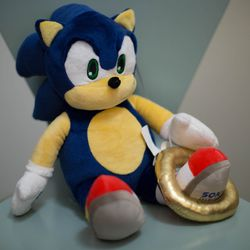 The Sonic the Hedgehog Build-a-Bear comes with a few accessories: There's a sound clip embedded in his paw that plays music from Sonic the Hedgehog 3, and he has a golden ring that he can wear like a bracelet.