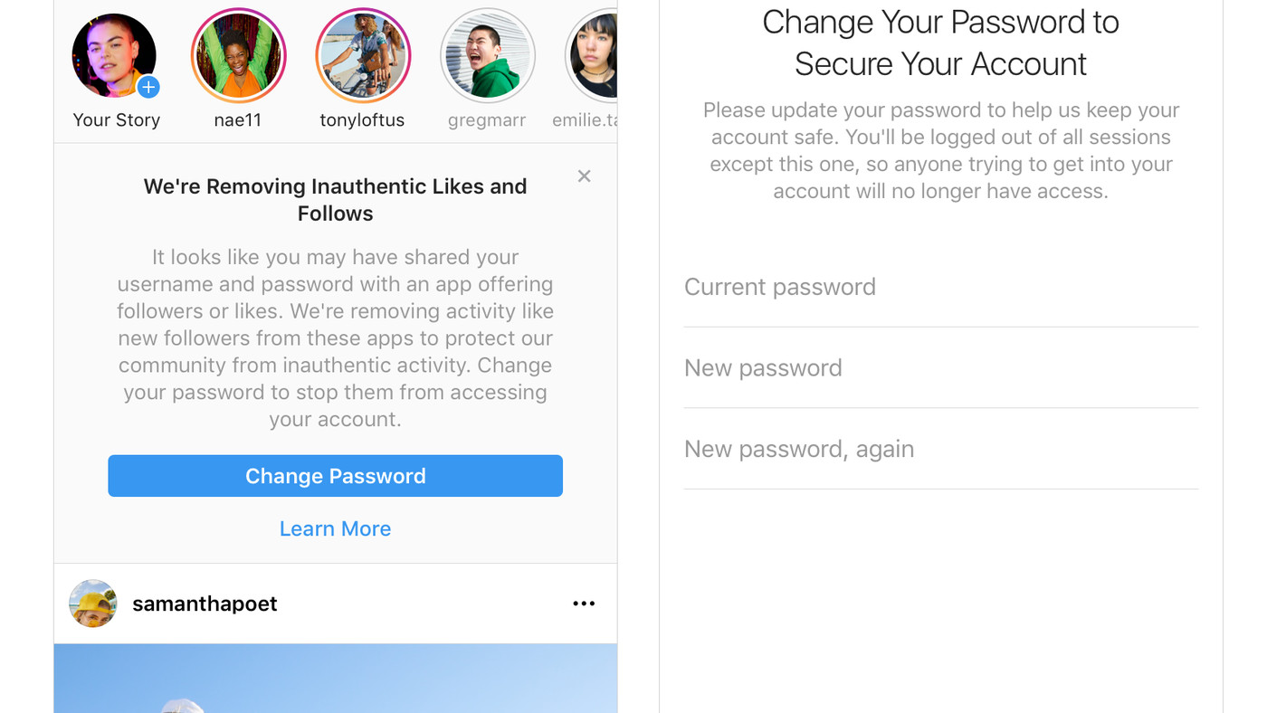 Instagram will remove fake likes and follows - The Verge