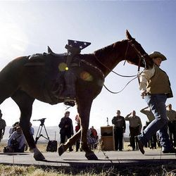 Marsha Milburn of the Salt Lake County Sheriff's Office leads a riderless horse past a grave marker Monday at the Bingham City Cemetery, in a ceremony for deputy James D. Hulsey, who was killed in the line of duty in 1913.