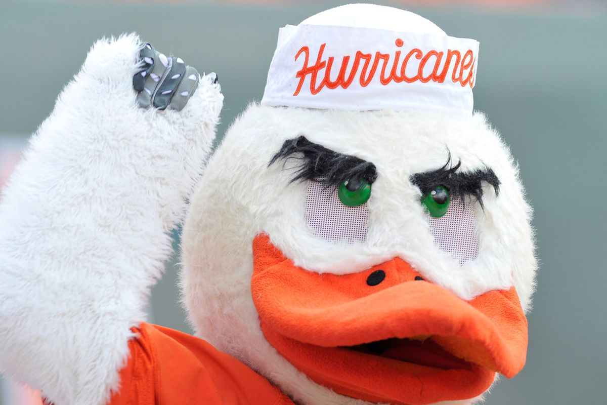 <em>What I think of when I see this: a very feminine duck. Not a Hurricane. (Mandatory Credit: Brad Barr-US PRESSWIRE)</em>