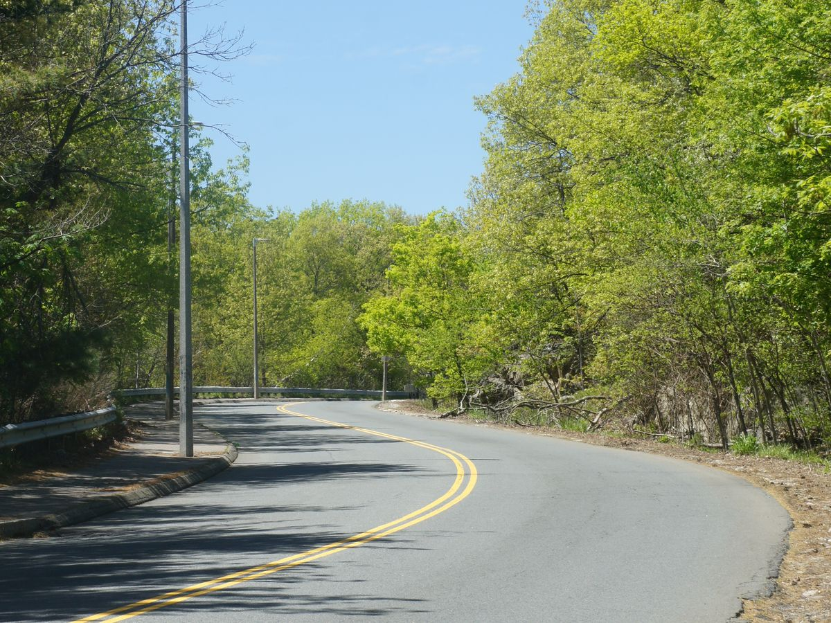 A two-lane path through Stony Brook Reservation.