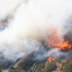 A wildfire burns at the mouth of Weber Canyon on Tuesday, Sept. 5, 2017.