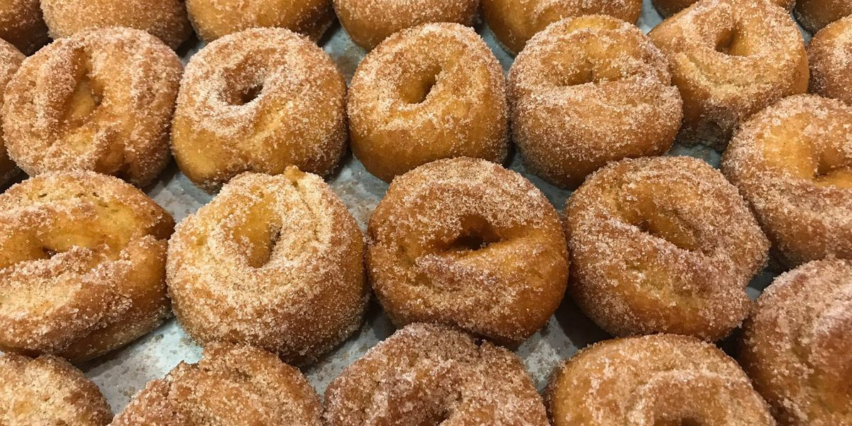 The Best Cider Doughnuts in the Boston Area - Eater Boston