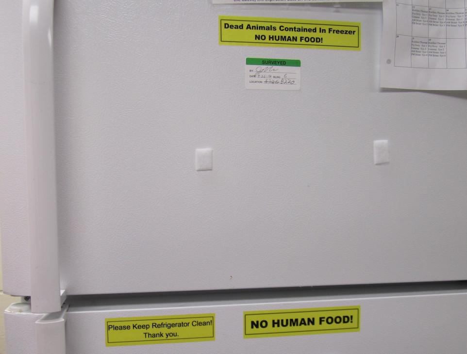 Surveyed fridge