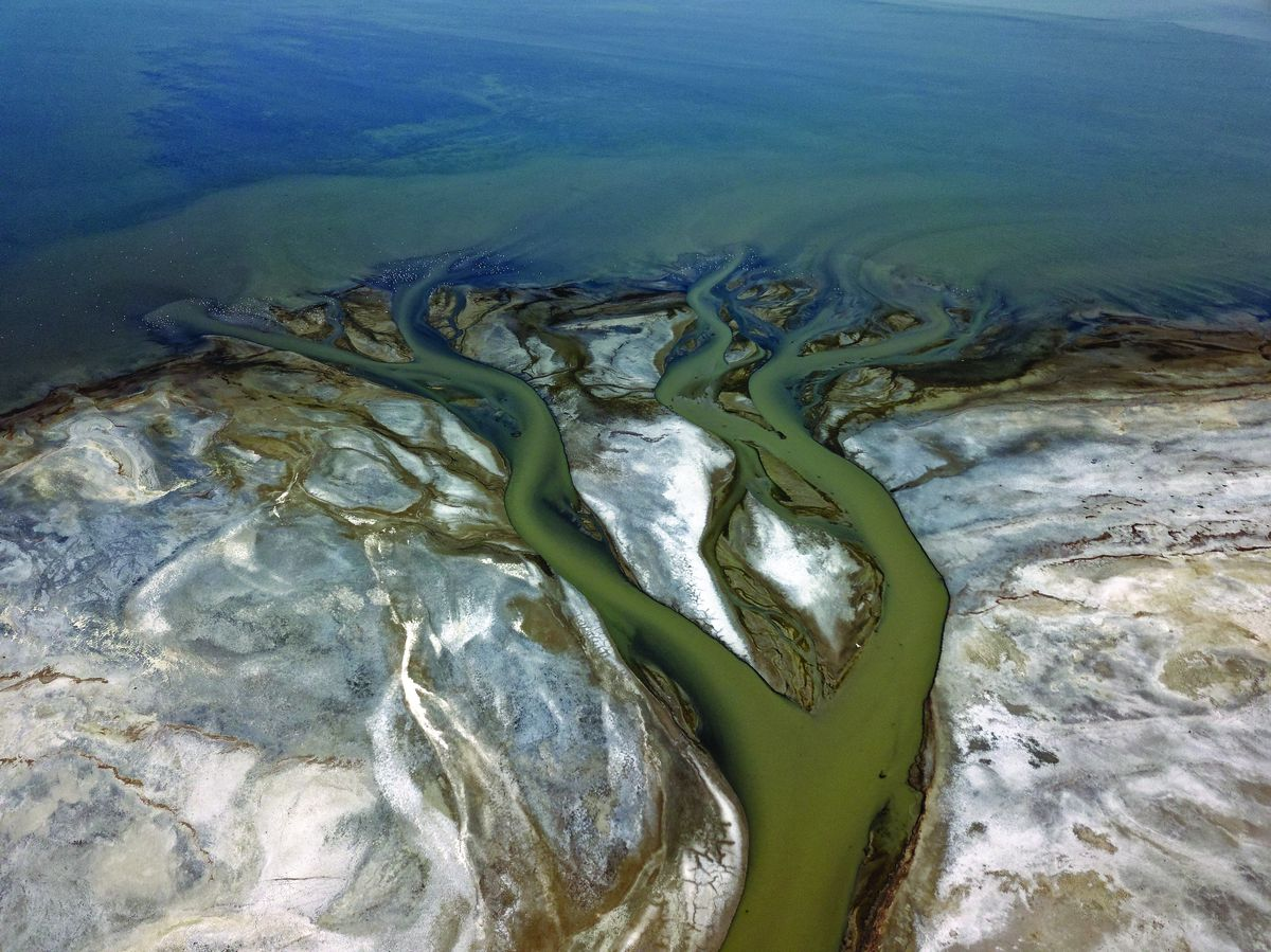 A delta forms as Lee Creek winds through mudflats along the southeastern shore of the Great Salt Lake