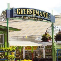 """""""If I ever have the winter blues, I come to <a href=""""http://www.gethsemanegardens.com/"""">Gethsemane Garden Center</a> [5739 North Clark Street] and spend hours in their greenhouse. There are lush plants around every turn, and they even have a waterfall wit"""