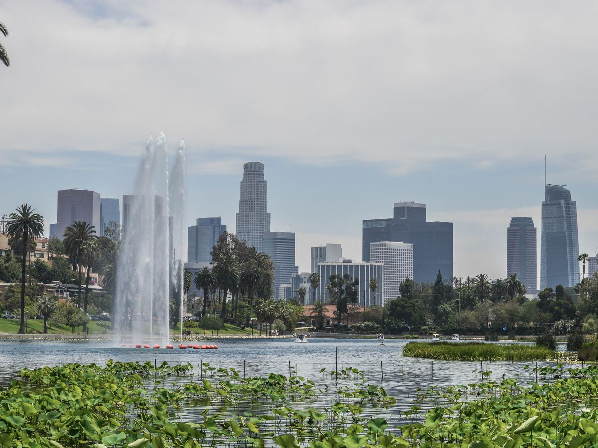 In the foreground are plants and grass. There is a body of water with a fountain. In the distance is a city skyline with tall buildings and skyscrapers.