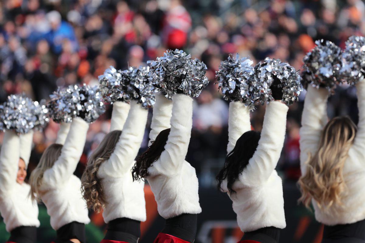 NFL: DEC 15 Patriots at Bengals