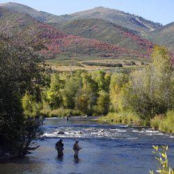 Fishing on the Provo River below the Jordanelle Reservoir Monday, Sept. 21, 2009, near Heber, Utah.  Tom Smart, Deseret News