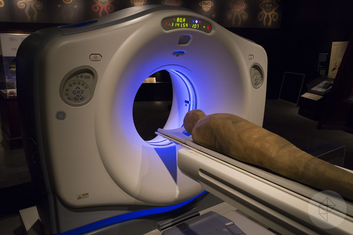 A non-working model of the CT scanner used to digitize the Field Museum's collection.