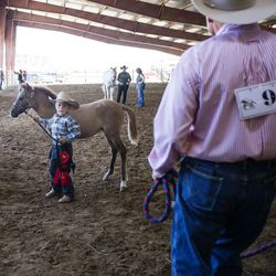 Chase Christensen, 5, stands with his foal, Tequilla, while other contestants walk in between the practice arena and the show barn at the Wild Horse and Burro Show at the Legacy Events Center in Farmington on Friday, June 9, 2017. Tequilla is a 4-month-old orphan that Chase will be adopting.