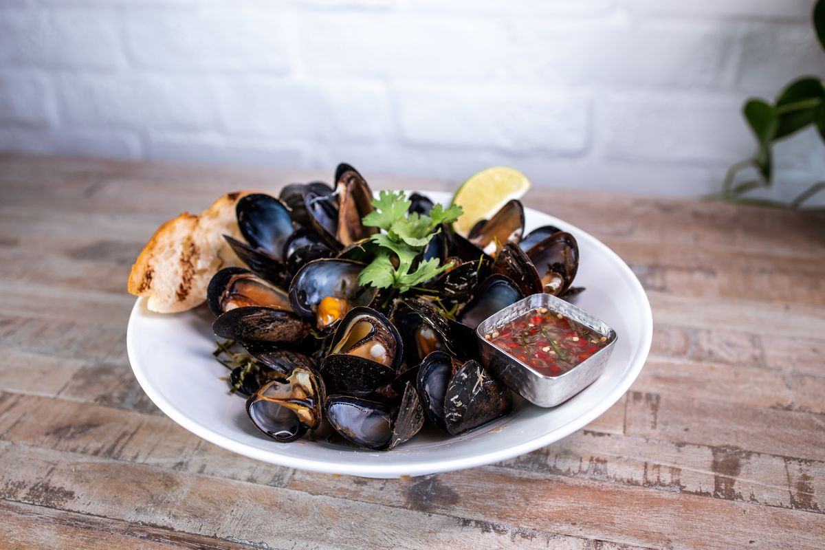 A white dish with mussels, sauce, and toasty bread sits on a wooden table.