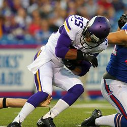 Aug 16, 2013; Orchard Park, NY, USA;  Minnesota Vikings cornerback Marcus Sherels (35) makes a catch after a punt by the Buffalo Billss during the first half at Ralph Wilson Stadium.