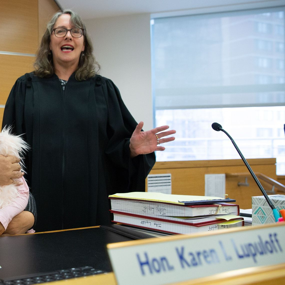Manhattan Family Court Judge Karen Lupuloff.