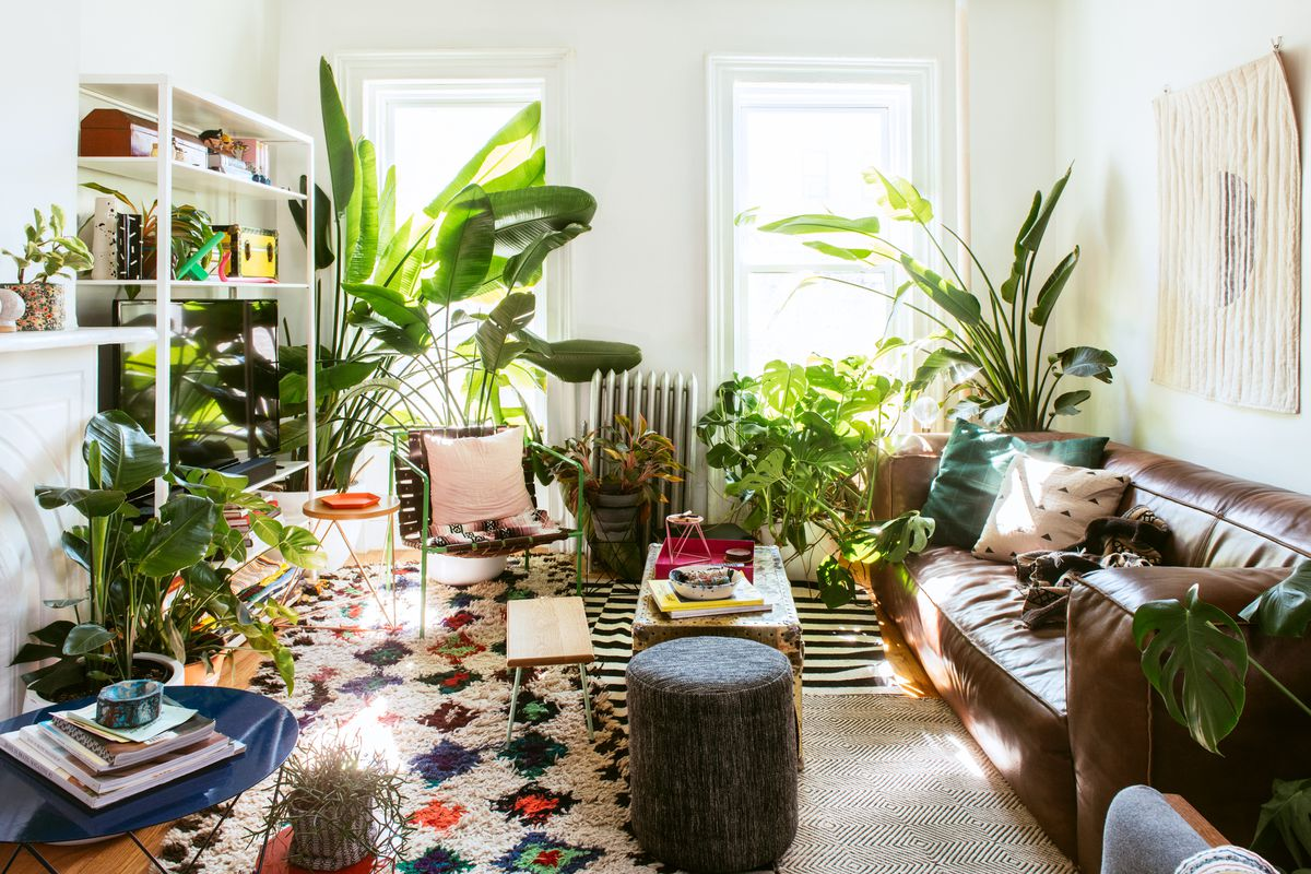 A living room. There is a brown leather couch with various colorful throw pillows. There is a coffee table. The walls are painted white. There are many houseplants in planters sitting on the floor. three is a colorful patterned area rug.