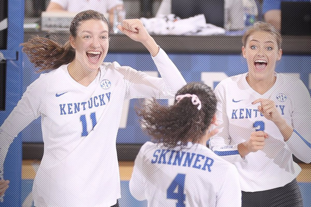 Kentucky Basketball What The Florida Win Means To The: Kentucky Wildcats Volleyball Makes History With Win At No