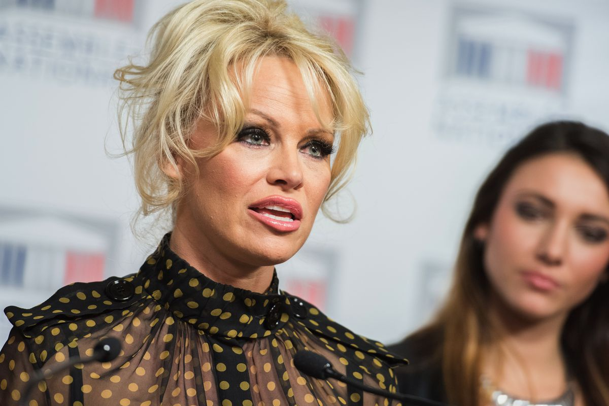 Pamela Anderson at France's National Assembly on Tuesday