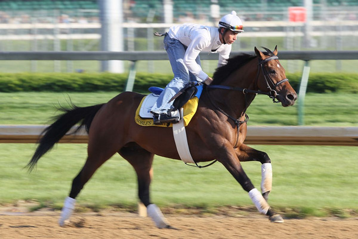 Noble's Promise is the 3/1 morning line favorite for Friday's Presque Isle Mile at Presque Isle Downs.