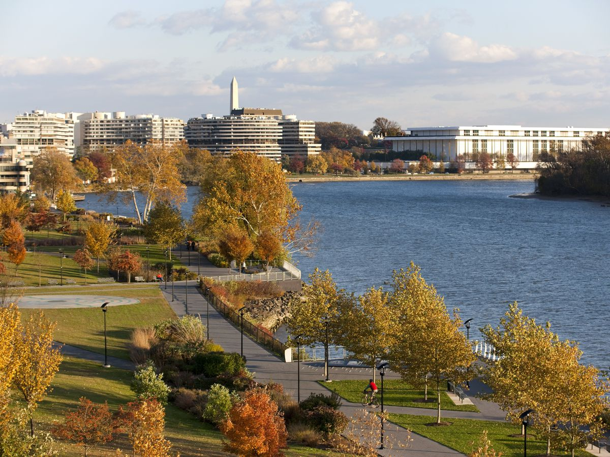Trees with fall foliage along a river. There are large buildings in the background.
