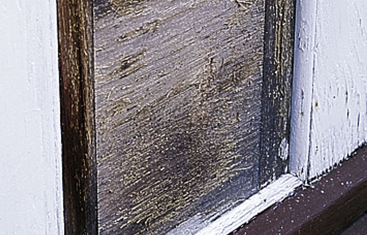 <p>The toughest job for a clear finish isn't keeping out water, it's preventing the sun from breaking down surface fibers, as it has done on this varnished wood panel in Washington.</p>
