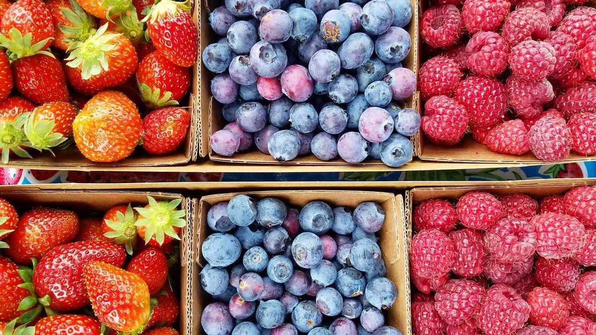 Strawberries from JSM Organics