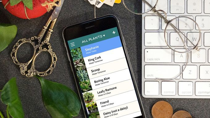 App screen on phone showing plant types