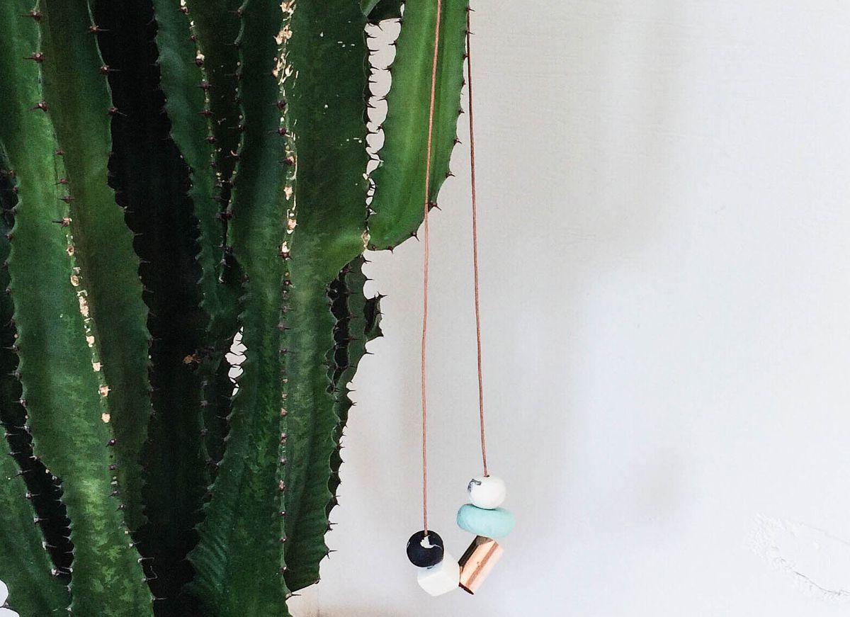 melissa-sonico-cactus