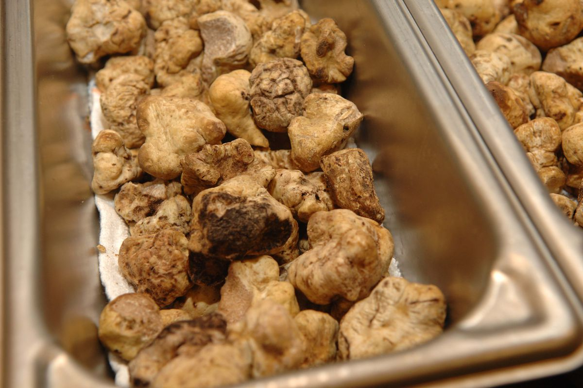 You Might Actually Be Able To Afford White Truffles This Year