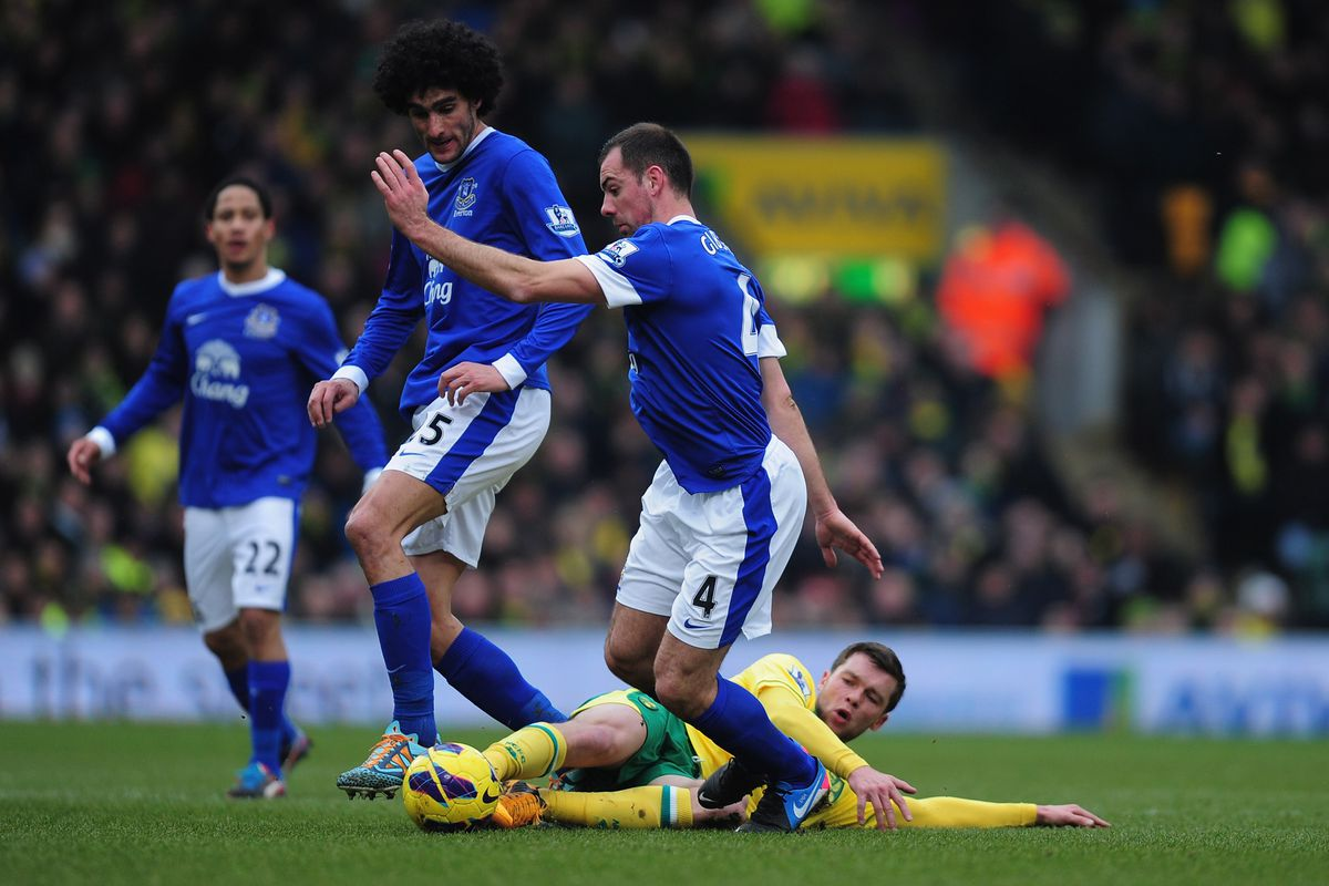 Darren Gibson and Marouane Fellaini could both be crucial players for Everton in the center of the pitch.
