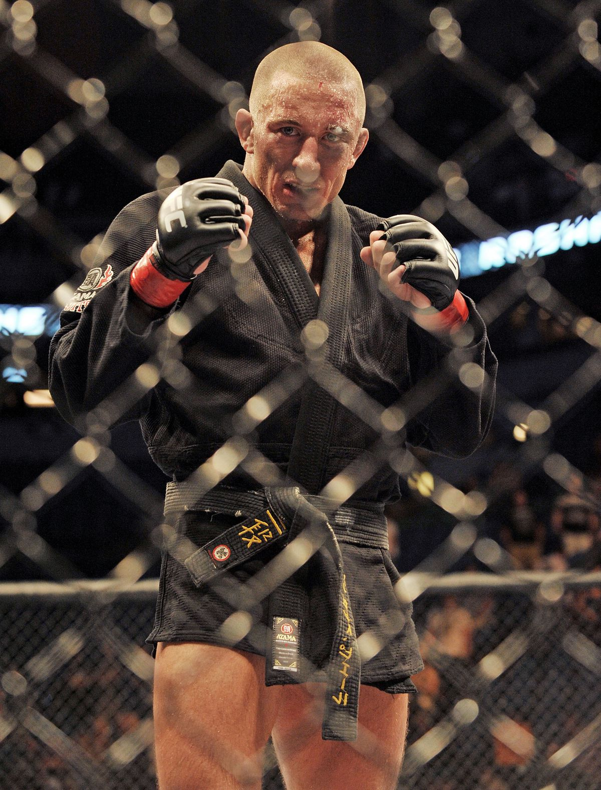 Georges St-Pierre after defeating Jon Fitch during the UFC 87 on August 9, 2008.