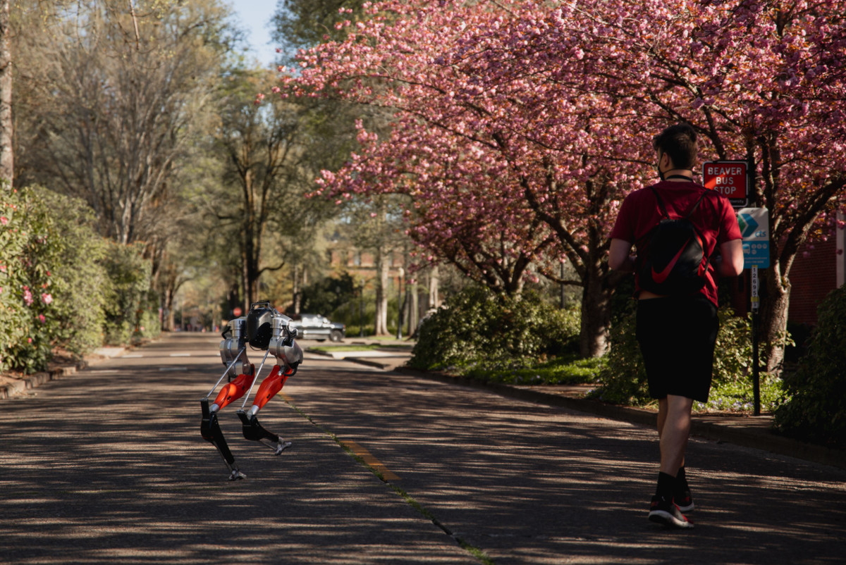 Could you beat this bipedal robot's 5K run time? - The Verge