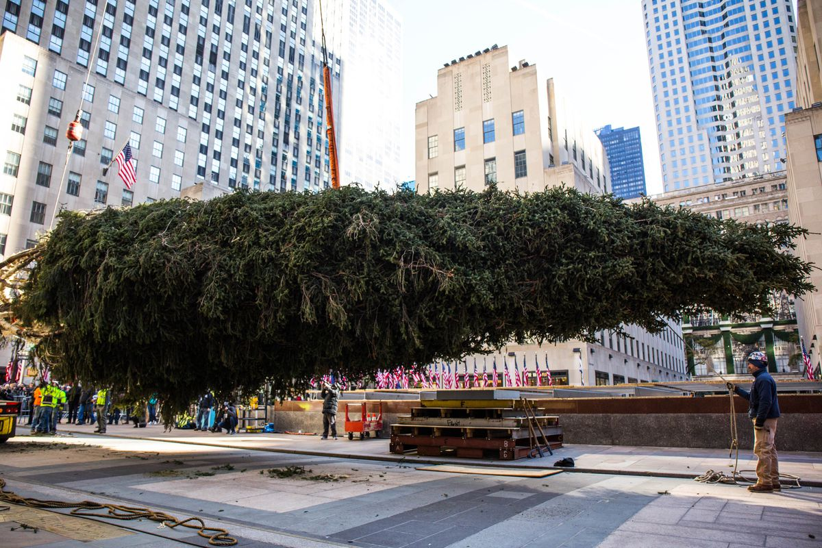 2017 Rockefeller Center Christmas Tree Has Arrived In Nyc