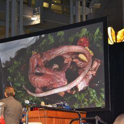 Bourdain v. Zimmern Cooking Challenge: Iguana