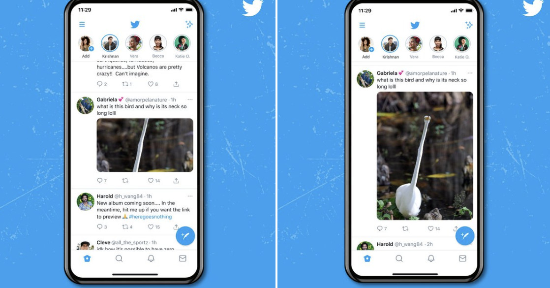 Twitter is ruining the open for surprise meme with better image crops – The Verge