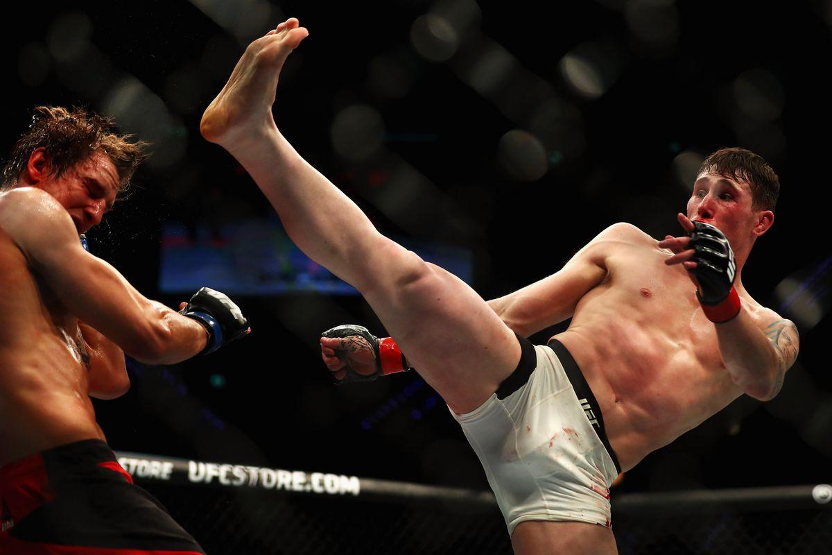 UFC Fight Night: Volkov v Struve