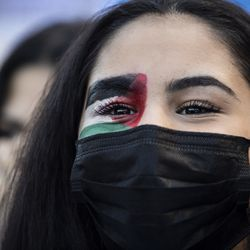 Thousands protest in support of Palestine and march through the Loop, Wednesday evening, May 12, 2021.