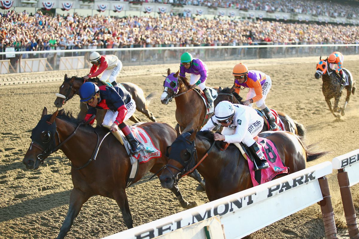 The belmont stakes and the triple crown a non horse racing fans the 2014 belmont stakes al bellogetty images falaconquin