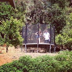 A trampoline!
