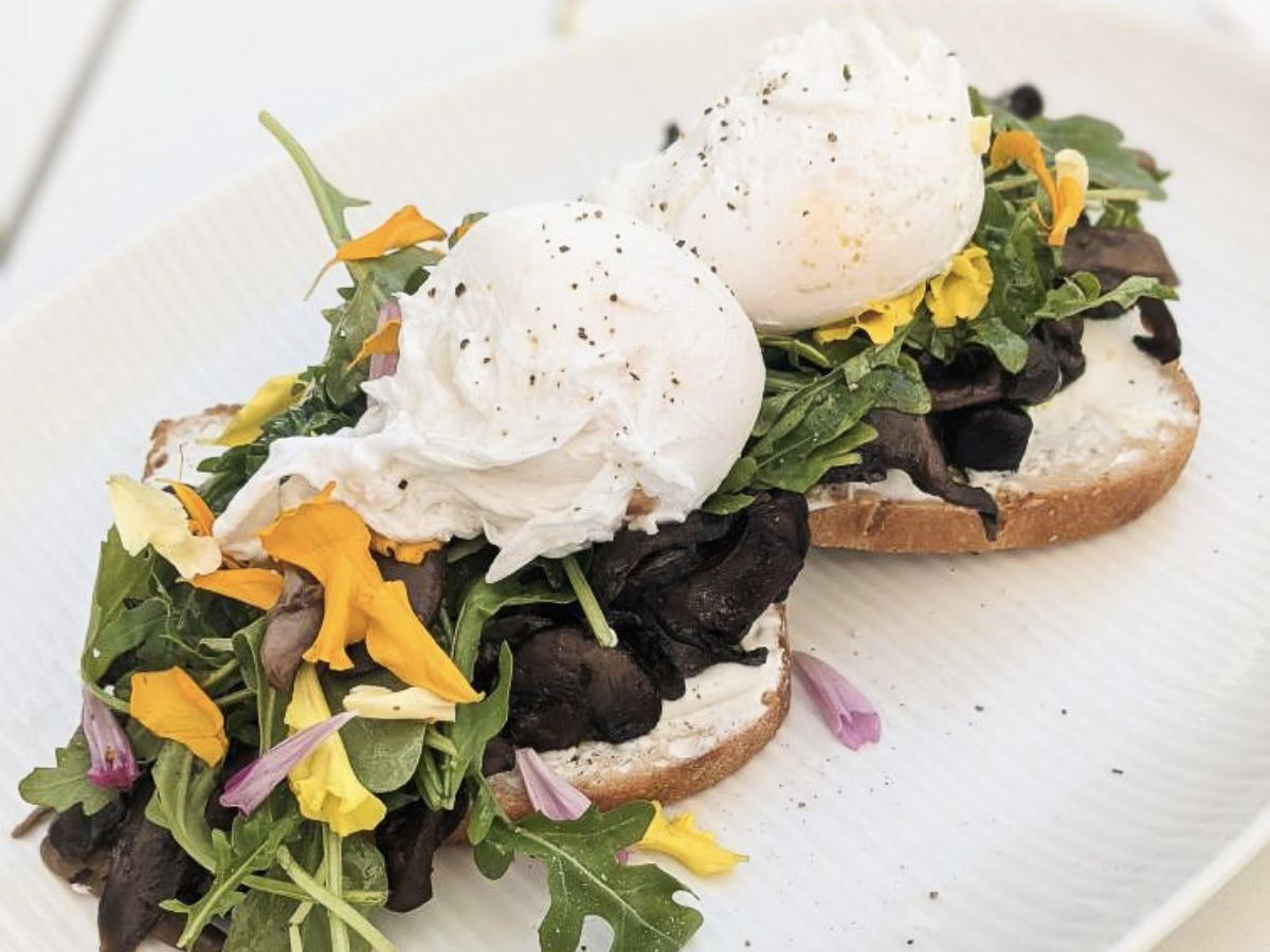 Mushroom and poached egg-topped toast.