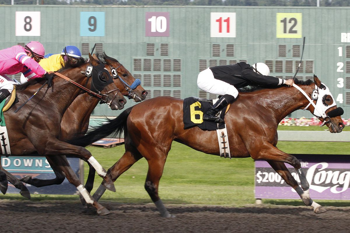 I Keep Saying and jockey Isaias Enriquez notch a one-length victory in the $14,500 feature race for 3-year-olds and up at Emerald Downs. Jim Penney is the trainer, Homestretch Farm Inc. the owner and breeder. Saturday, May 25, 2013