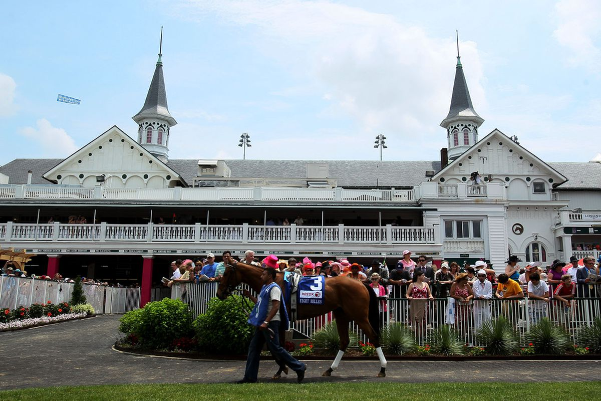 LOUISVILLE, KY - MAY 04:  A horse is lead through the paddock prior to a race during the 138th running of the Kentucky Oaks at Churchill Downs on May 4, 2012 in Louisville, Kentucky.  (Photo by Elsa/Getty Images)