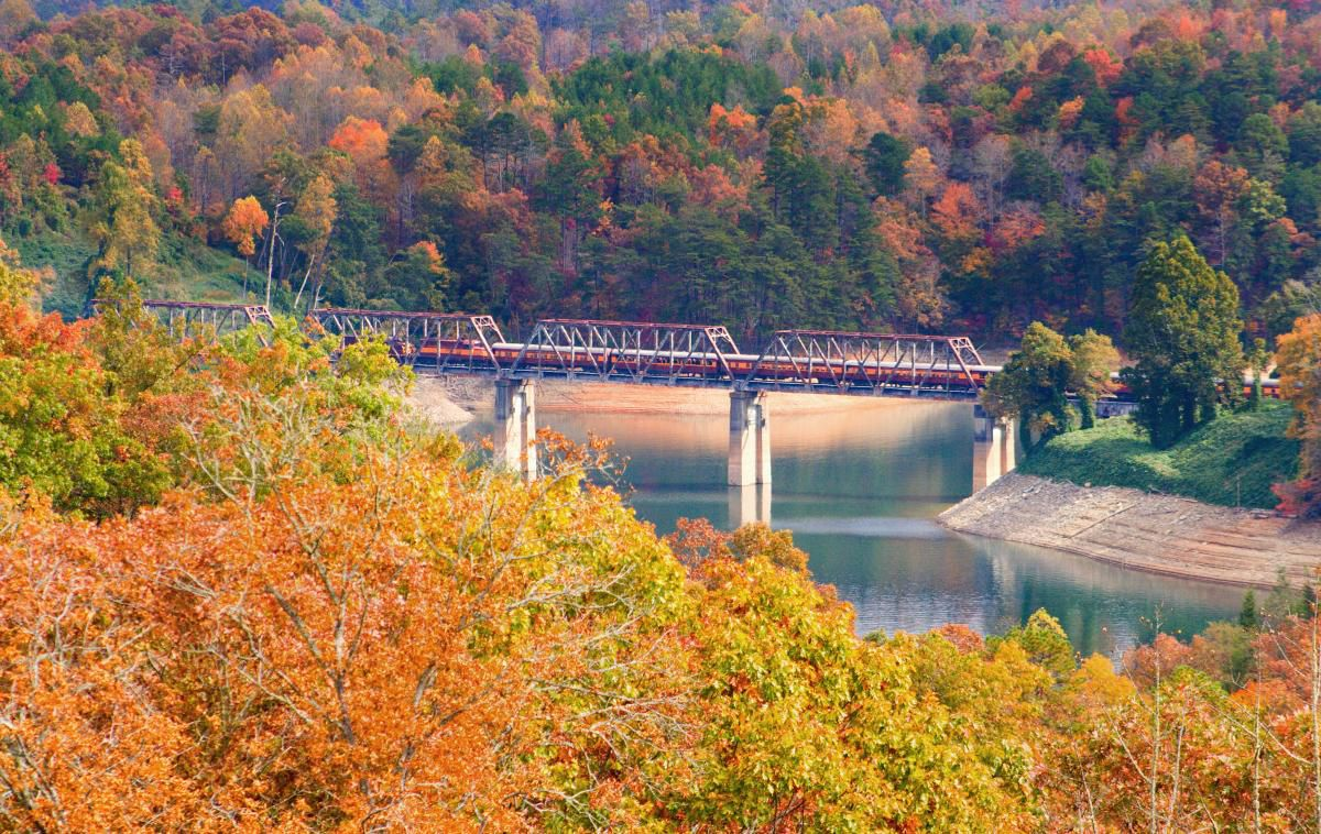 A train rides along an elevated track above a body of water. There are multi-colored trees surrounding the body of water.