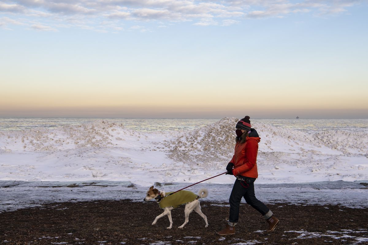 A woman walks her dog near Foster Avenue Beach earlier this week. More snow is expected Saturday before temperatures plummet.