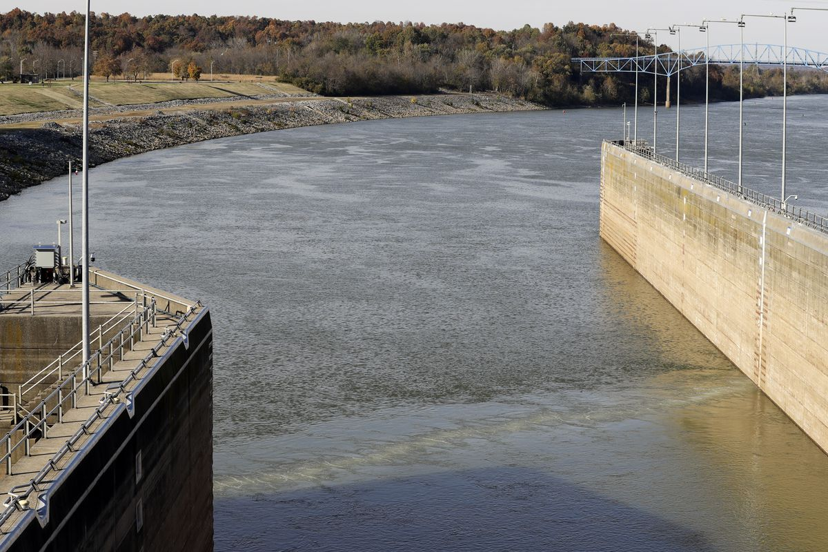 Asian carp $8 million question: Why won't Illinois get serious about beating back invasive species?