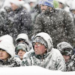 Frozen Fans