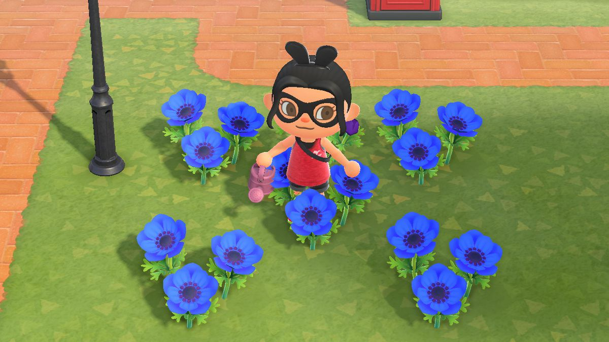 An Animal Crossing character stands around a bunch of blue windflowers